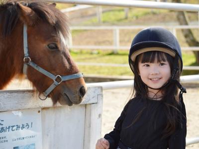 馬とふれあいイメージ