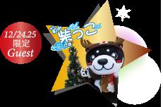 12月24・25日のゲストは和柴っこ