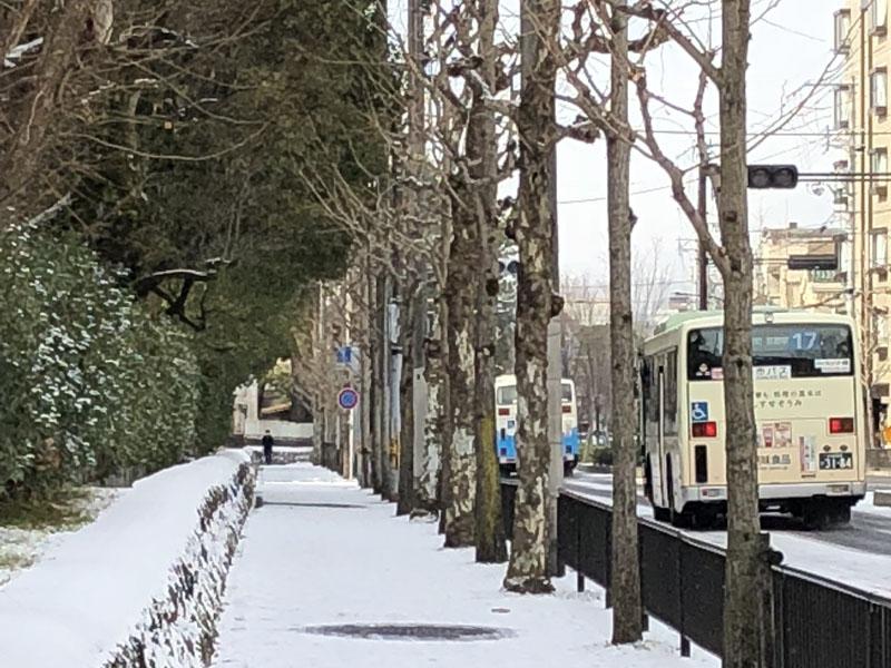 1月 雪景色