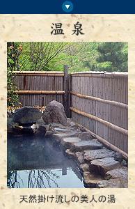 亀屋のお風呂 天然掛け流しの美人の湯