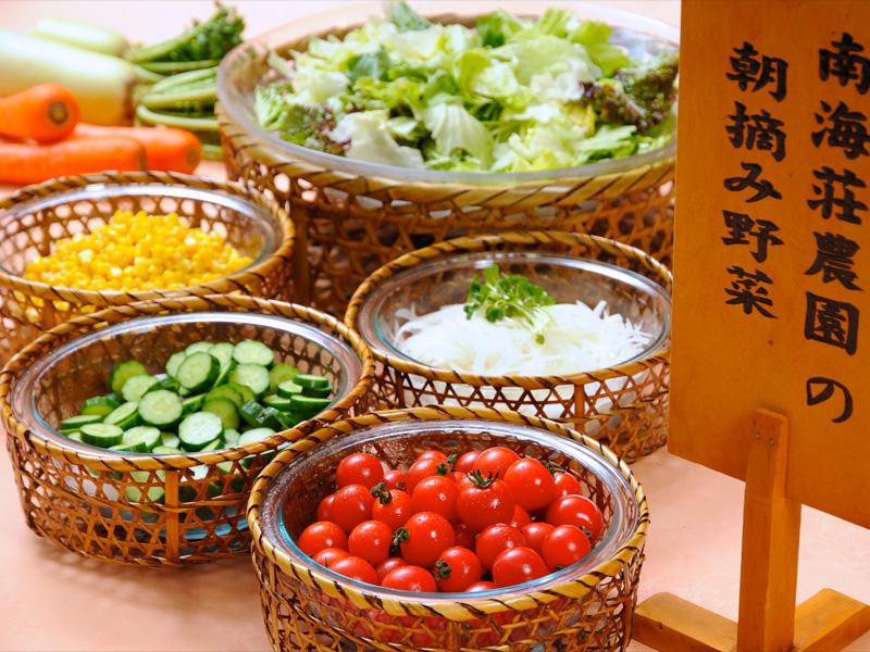 直営農園の朝摘み野菜