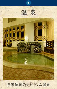 南海荘のお風呂の紹介