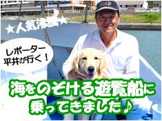 野島崎海底透視船の紹介