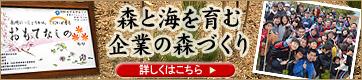 長崎にっしょうかん:森と海を育む企業の森づくり